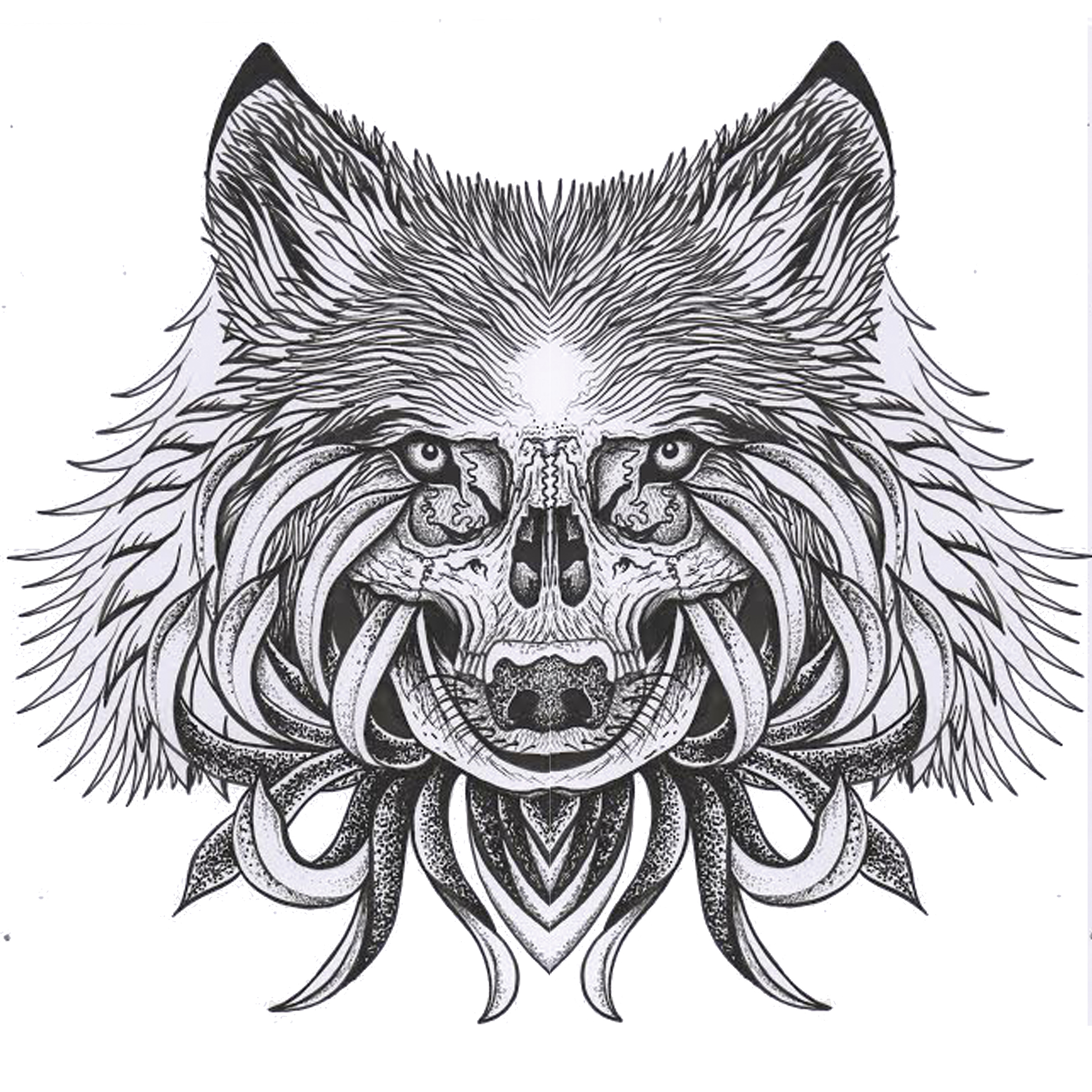 I Created The Image For This Artwork First In Photoshop I Picked Elements  From A Wolf, Bear, Skull And Chrysanthemum Flower That I Felt Would Make A